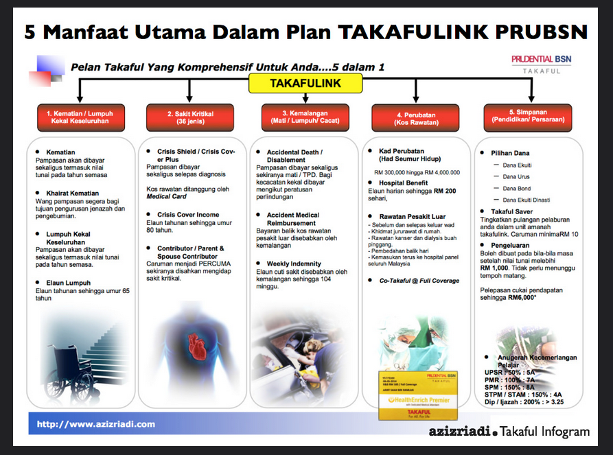 5 in 1 Plan Infogram Flickr Photo Sharing