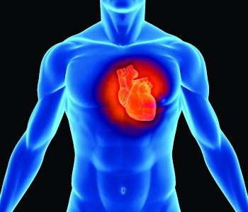 penjagaan jantung